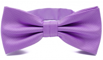 Purple Polyester Bow Tie